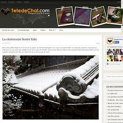 La cérémonie Donto Yaki - donto, Japon, sagicho, voyage - TetedeChat.com