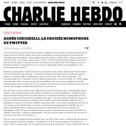 Agnès Cerighelli, la croisée homophobe de Twitter