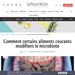 Comment certains aliments courants modifient le microbiote