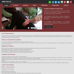 Formation Certifiante en Massage Amma Assis - Organisme de formation enregistré sous le n° 72 33 09603 33 auprès de la Préfecture de Région Aquitaine. Massage sur chaise - Bordeaux - Gironde - Aquitaine.