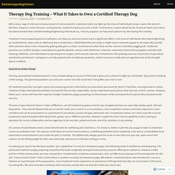 Therapy Dog Training – What It Takes to Own a Certified Therapy Dog – batonrougedogtrainer