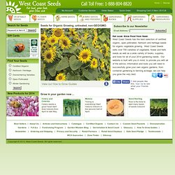 Organic Seeds Organic Heritage Seeds Heirloom Seeds Untreated Seeds Open Pollinated Seeds