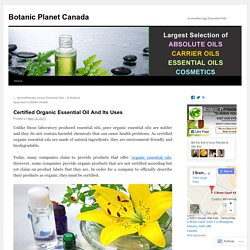 Certified Organic Essential Oil And Its Uses