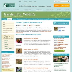 Create a Certified Wildlife Habitat