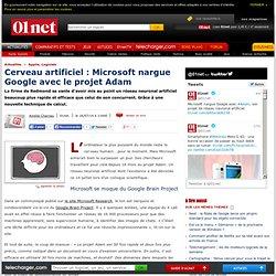 Cerveau artificiel : Microsoft nargue Google avec Adam