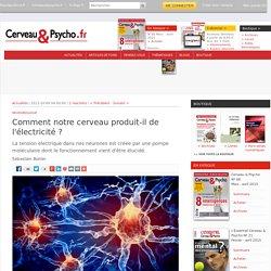 Comment notre cerveau produit-il de l'électricité?