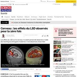 Cerveau : les effets du LSD observés pour la 1ère fois - 12 avril 2016