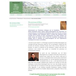 Du cerveau à Dieu - Denis Guichard-Un nouveau regard sur le Vivant