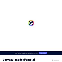 Cerveau, mode d'emploi by jerome.hubert123 on Genially