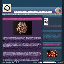 Le cerveau et l'illusion du libre-arbitre