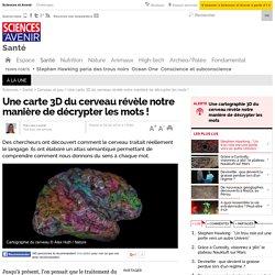 Une carte 3D du cerveau révèle notre manière de décrypter les mots !