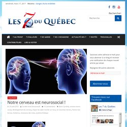 Notre cerveau est neurosocial ! – les 7 du quebec