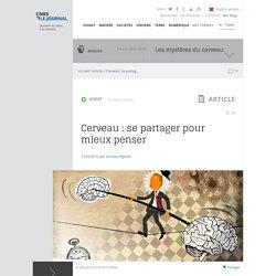 Cerveau : se partager pour mieux penser
