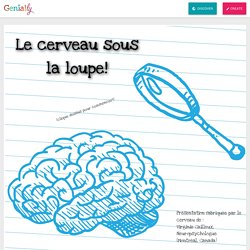 Le cerveau sous la loupe by virginiezbox on Genially