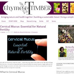Cervical Mucus: Essential for Natural Fertility