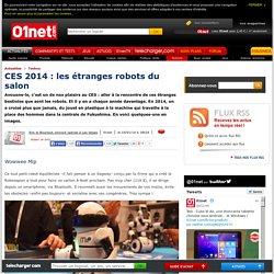 CES 2014 : les étranges robots du salon