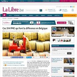 CULTURE_ENTREPRISE_Ces 514 PME qui font la différence en Belgique