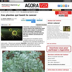 Ces plantes qui tuent le cancer