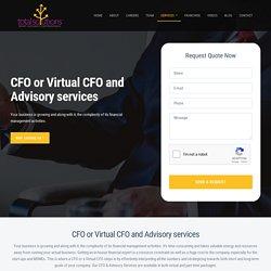 CFO or Virtual CFO and Advisory services