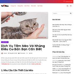 Dịch Vụ Tắm Mèo Và Những Thông Tin Các Sen Nên Biết