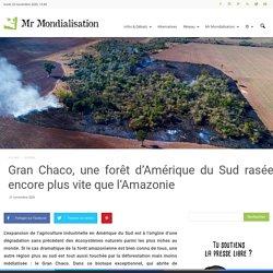 Gran Chaco, une forêt d'Amérique du Sud rasée encore plus vite que l'Amazonie