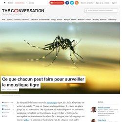 THE CONVERSATION 12/05/17 Ce que chacun peut faire pour surveiller le moustique tigre
