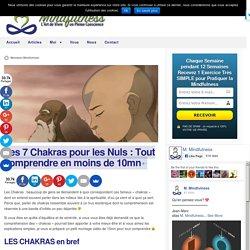 Les 7 Chakras pour les Nuls : Tout comprendre en moins de 10mn