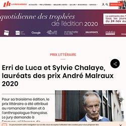 Erri de Luca et Sylvie Chalaye, lauréats des prix André Malraux 2020...