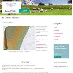 Le Châle 3 couleurs – Blog Laine et Tricot
