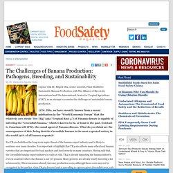 FOOD SAFETY MAGAZINE 20/10/20 The Challenges of Banana Production: Pathogens, Breeding, and Sustainability