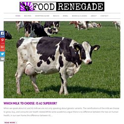 Food Renegade | Challenging Politically Correct Nutrition