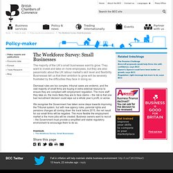British Chambers of Commerce - The Workforce Survey: Small Businesses