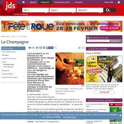 Le Champagne : tout savoir pour apprécier cette boisson d'exception