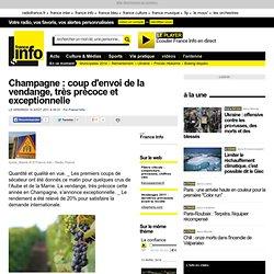 Champagne : coup d'envoi de la vendange, très précoce et exceptionnelle - France - Toute l'actualité en France