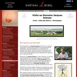Champagne Selosse - Visite