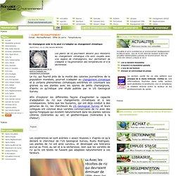 ACTUALITES NEWS 26/07/11 Un champignon aide le riz peut à s'adapter au changement climatique