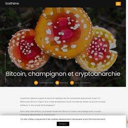 #0/58 Bitcoin, champignon et cryptoanarchie - Sosthène