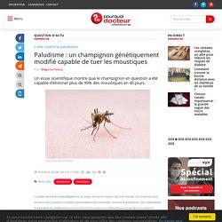 POURQUOI DOCTEUR 02/06/19 Paludisme : un champignon génétiquement modifié capable de tuer les moustiques