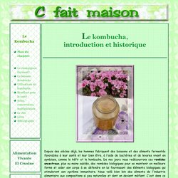 """Le kombucha - """"Champignon de longue vie"""" : Introduction et historique"""