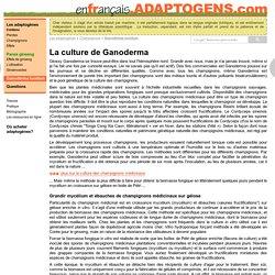 La culture de Ganoderma