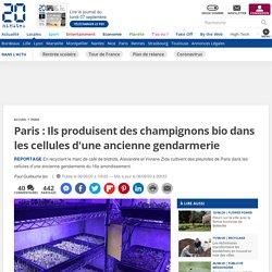 Paris : Ils produisent des champignons bio dans les cellules d'une ancienne gendarmerie