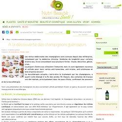 A la découverte des champignons guérisseurs - Nutri Beauté Santé