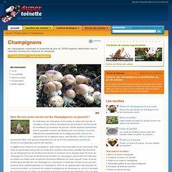Champignons ~ Fiche Champignons et recettes de Champignons sur Supertoinette