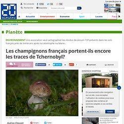 Les champignons français portent-ils encore les traces de Tchernobyl?