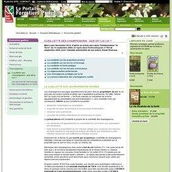 Cueillette des champignons : que dit la Loi ? - Forêt Privée Française, le portail des forestiers privés - Dossiers thématiques / Economie gestion / Cueillette des champignons : que dit la Loi ?