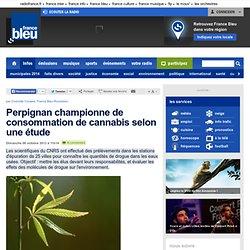 Perpignan championne de consommation de cannabis selon une étude