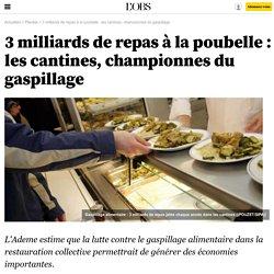3 milliards de repas à la poubelle : les cantines, championnes du gaspillage