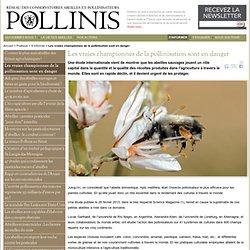 Les vraies championnes de la pollinisation sont en danger