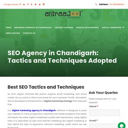 SEO Agency in Chandigarh: Tactics and Techniques Adopted