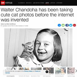 Walter Chandoha: The godfather of cat photography